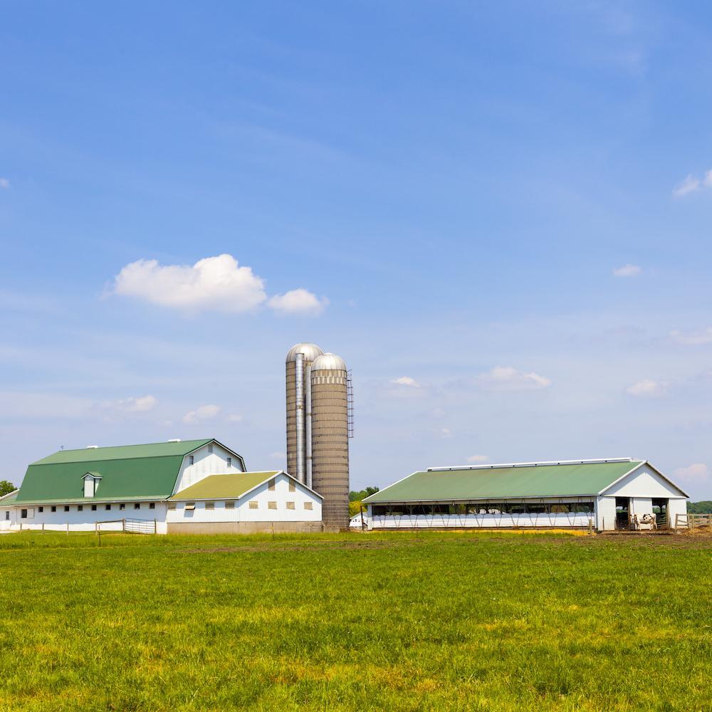 Obiekty rolnicze
